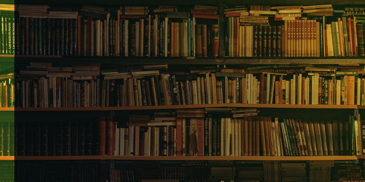 Böcker samhälle säkerhet